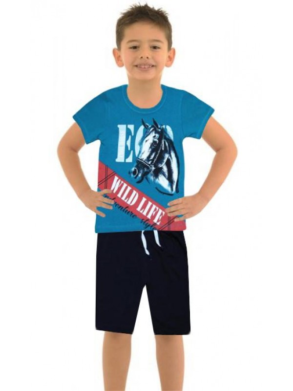 6-7-8-9 yaş yazlık erkek çocuk ikili takım at baskılı renk3