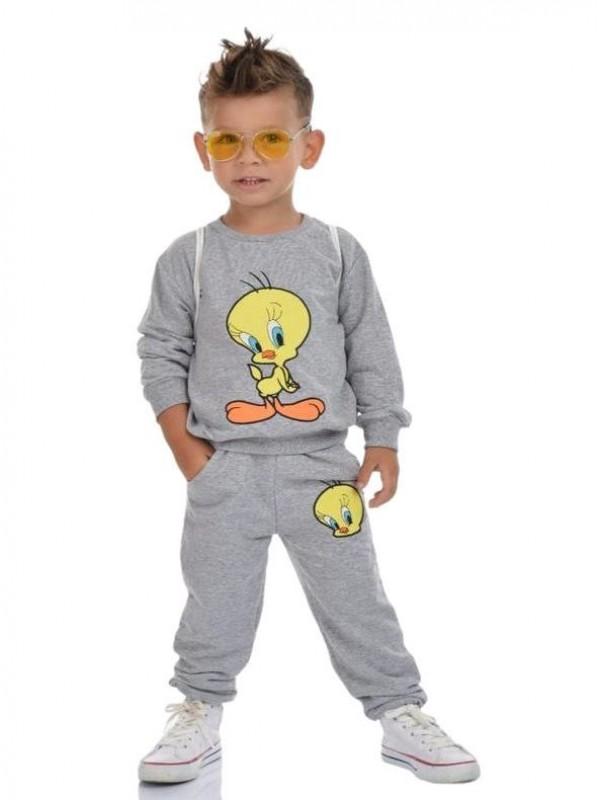 зимняя детская одежда для мальчиков оптом 2/8 лет с принтом твити серый